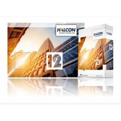 HALCON 12