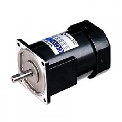 200W_AC Motor