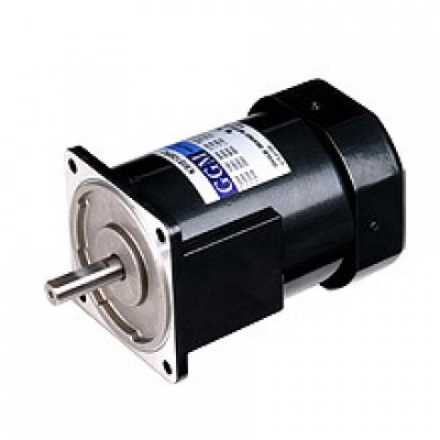 150W_AC Motor