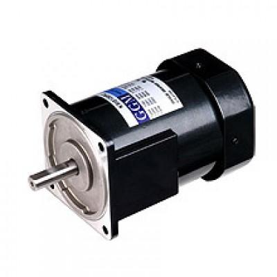 120W_AC Motor
