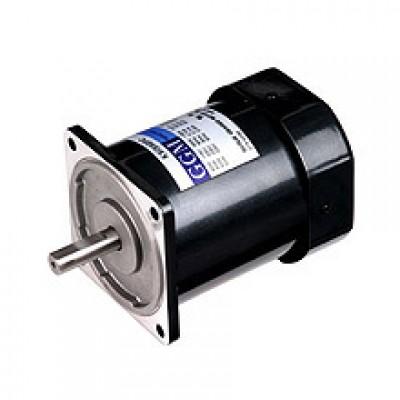 60W_AC Motor
